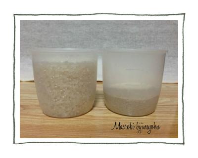 マクロビ玄米と白米の違い1